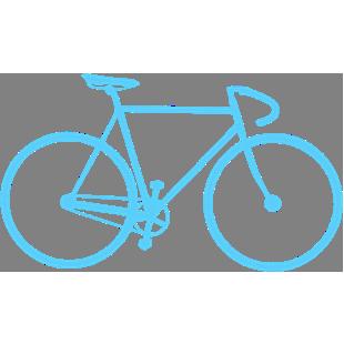 Flottes de vélos